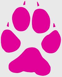 site-de-rencontre-cougar